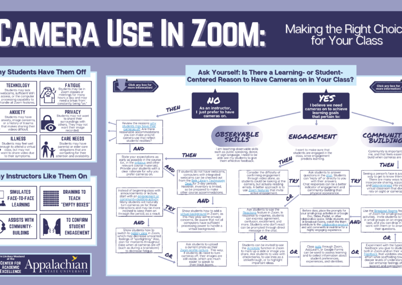 An infographic of Camera Use In Zoom: making the right choices for your class